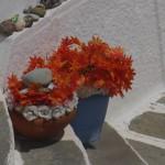 flowersonstep (Looking Around)