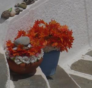 flowersonstep